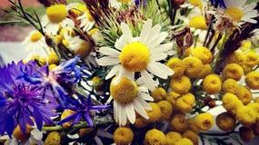 Florece el manojo de ramo de las flores Fotografía de archivo libre de regalías
