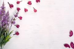 Florece la lila de los pétalos imagen de archivo libre de regalías
