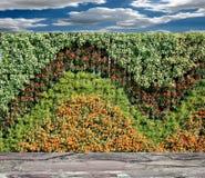 Florece la pared vertical del jardín foto de archivo