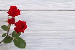Florece rosas rojas enmarcó la superficie de madera Imagenes de archivo
