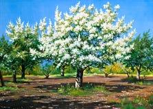 Floreciendo, jardín del resorte Ilustración del Vector