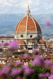 Florence cathedral with flowers. Florence cathedral in Tuscany, Italy Royalty Free Stock Image