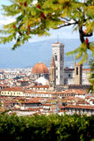 Florence cathedral with tree Stock Image