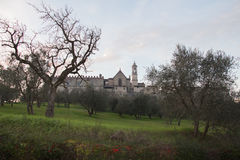 Florence Charterhouse church. Certosa di Galluzzo di Firenze. Italy. royalty free stock photography