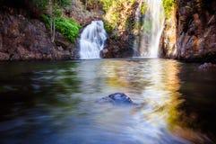 Florence Falls in het Nationale Park van Litchfield, NT, Australië stock afbeelding