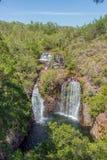 Florence Falls på Florence Creek, den Litchfield nationalparken, nordligt territorium, Australien royaltyfri bild