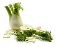 Florence fennel isolated stock photography