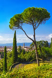 Florence or Firenze Palazzo Vecchio, trees,  aerial cityscape fr. Om a public garden. Tuscany, Italy Europe Royalty Free Stock Photo