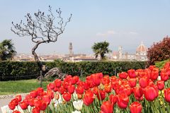 Florence från den Piazzale Michelangelo synvinkeln Royaltyfri Fotografi