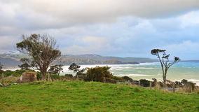 Florence Hill coastline in New Zealand Stock Images