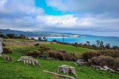 Florence Hill Lookout no Catlins, ilha sul, Nova Zelândia fotografia de stock royalty free