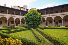 Florence Italien - Maj 19, 2014: Tangerinträd i det Laurentian arkivet Arkivfoton