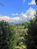 Florence Italy landscape spring green country travel trees stock photos