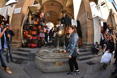 FLORENCE, ITALY - MARCH 27 2017 - Tourist touching fortune boar pig in Florence. The legend is to touch and leave a coin for a lot of good life luck Stock Photos