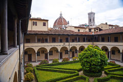 Florence, Italy - May 19, 2014: Tangerine tree in Laurentian library. Stock Images