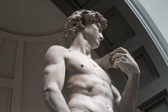 The statue of David is a bottom view without tourists royalty free stock photo