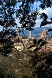Florence Landscapes XVII Image stock