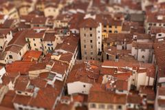 Florence Model. View of the roof of Florence in a model way Royalty Free Stock Images
