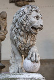 Florence. Piazza Della Signoria. Lion sculpture Royalty Free Stock Images