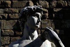 Florence piazza signoria della Zdjęcia Stock