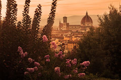 Florence's cathedral Royalty Free Stock Photos