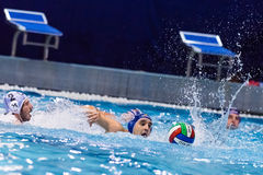 FLORENCIA, EL 7 DE NOVIEMBRE: D Filipovic (gestión del deporte de BPM) Fotografía de archivo libre de regalías