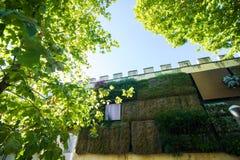 Florencia, Italia - octubre de 2017 Florencia que sorprende - viaje en la serie de Italia de foto Pared verde imagen de archivo libre de regalías