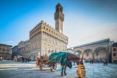 (1519-74) Florencja obrazy royalty free