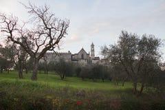 Florencja Charterhouse kościół Certosa Di Galluzzo di Firenze Włochy Fotografia Royalty Free