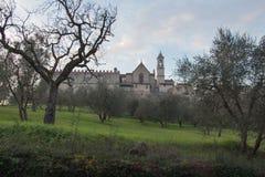 Florencja Charterhouse kościół Certosa Di Galluzzo di Firenze Włochy Obraz Stock