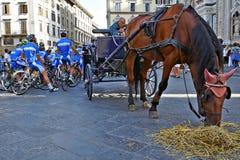 FLORENCJA, ITALY-AUGUST 28 Włochy drużyna narodowa. przygotowywa dla m Obrazy Royalty Free