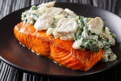 Florentine Salmon is simmered in a creamy wine sauce and topped with sauteed spinach and mushrooms close up on the plate. Florentine Salmon is simmered in a royalty free stock images