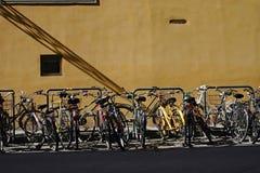 Florentinische Fahrräder Stockfoto