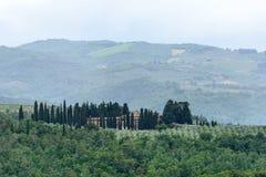 Florenz (Firenze) Stockbilder