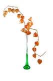 Florero Imagen de archivo libre de regalías