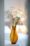 Florero ambarino Fotos de archivo libres de regalías