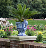 Florero azul de la porcelana con una planta Imagenes de archivo