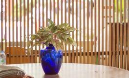 Florero azul en la tabla Foto de archivo libre de regalías