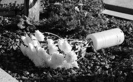Florero caido con las flores Fotos de archivo