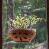 Florero con las flores que cuelgan en el marco de ventana cerca del jardín tropical, isla Koh Chang, Tailandia Fotos de archivo