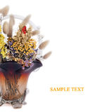 Florero con las flores secadas aisladas Imagen de archivo libre de regalías