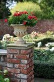 Florero con las rosas rojas Fotografía de archivo libre de regalías