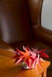 Florero de cerámica con las hojas de otoño Fotos de archivo libres de regalías