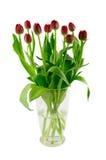 Florero de cristal con los tulipanes rojos Fotografía de archivo libre de regalías