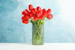 Florero de cristal con los tulipanes rojos hermosos en la tabla blanca contra fondo azul foto de archivo libre de regalías