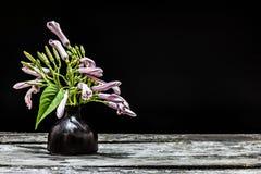 Florero de flores Imagen de archivo libre de regalías