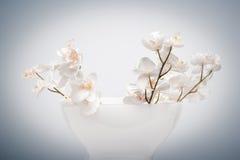 Florero de flores falsas Imagen de archivo