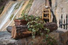 Florero de la hiedra y rueda de molino con efecto inclinable del cambio Foto de archivo libre de regalías