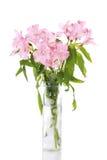Florero de lirios rosados Fotos de archivo