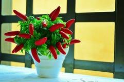 Florero decorativo de la pimienta Foto de archivo